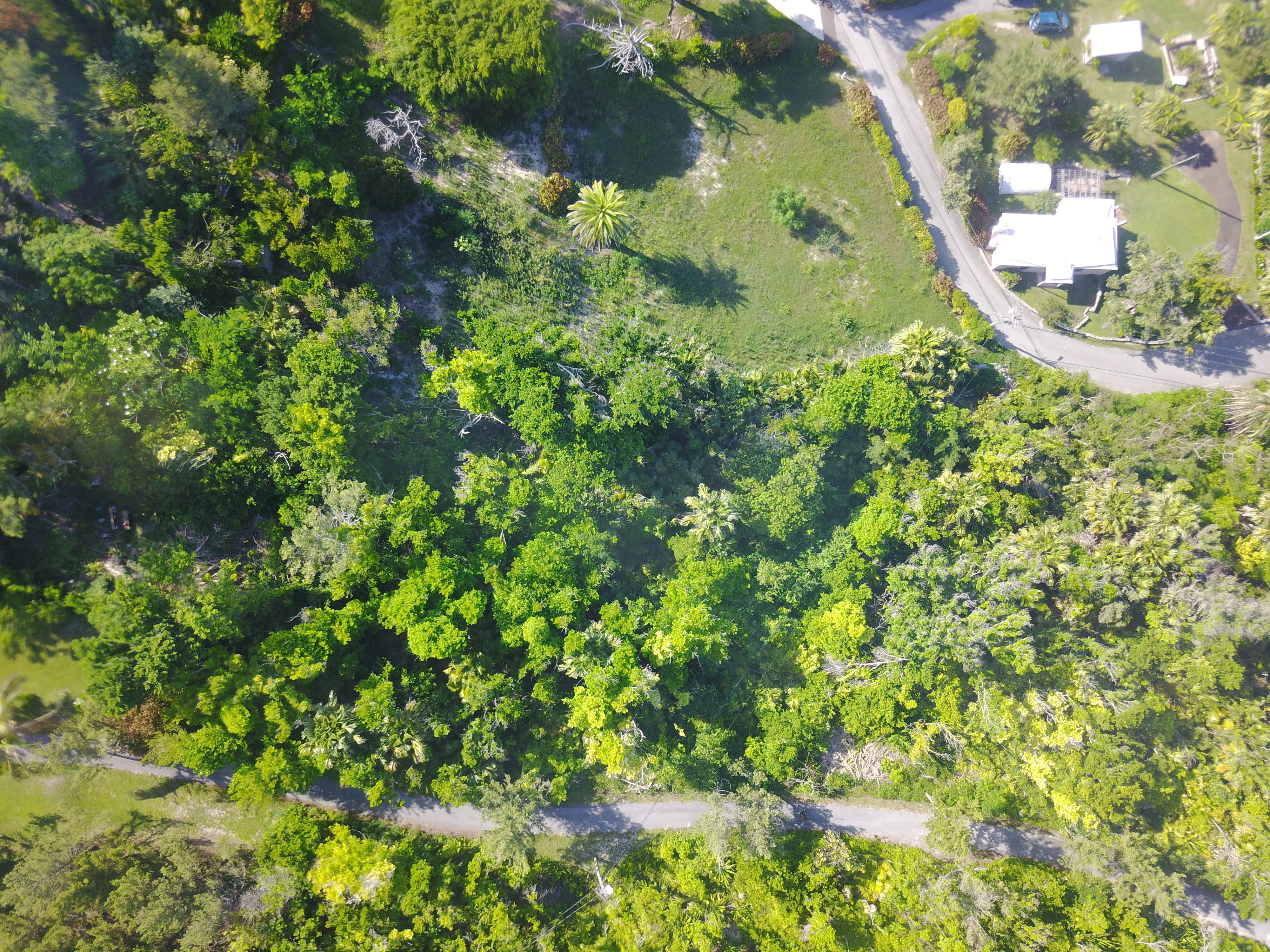 Gorgeous Vacant lots ready for your dream home!