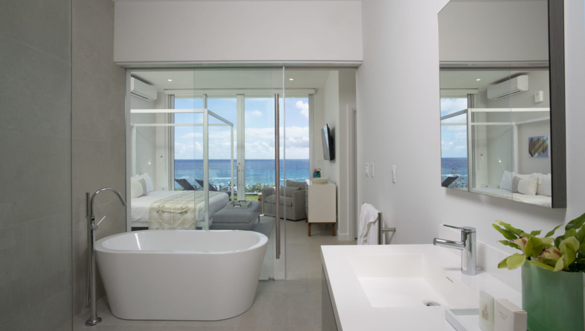 1 BS Mbathroom daytime looking out